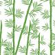 Bambou feuilles et tige - vert - zoom