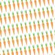 Rang de carottes - zoom