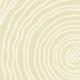 Vagues de sable - zoom